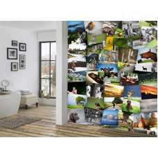 Загородные пейзажи, набор 64 постера