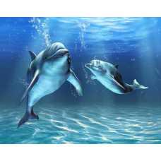 Два дельфина D2-064, 300*238 см