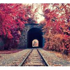 Железная дорога Б1-097, 300*270 см