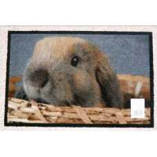 Коврик придверный Deco-UP Кролик (50*75 см)