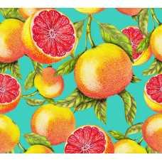 Грейпфруты H-074, 300х270