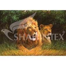 Коврик Shahintex Photoprint SH P121 (100х145cм)